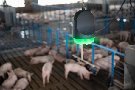 SoundTalks 24/7 surveillance makes physically entering the barn less essential
